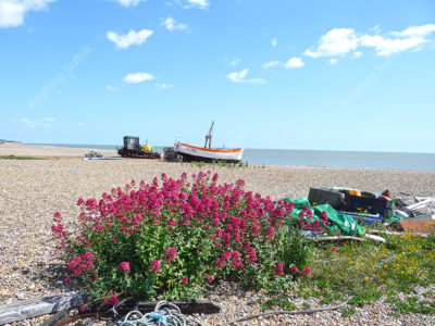 Aldeburgh beach by David Mayhew