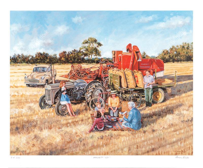Harvest 65 by Steven Binks