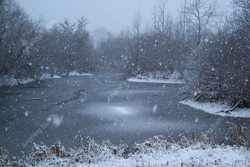 Needham Lake in the snow by Helen Fairweather