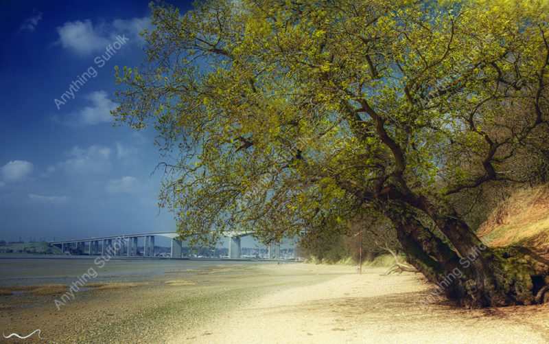 Orwell Country Park and Orwell Bridge by Steve Stoddart
