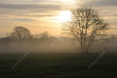 Misty Suffolk Landscape by James Ellis