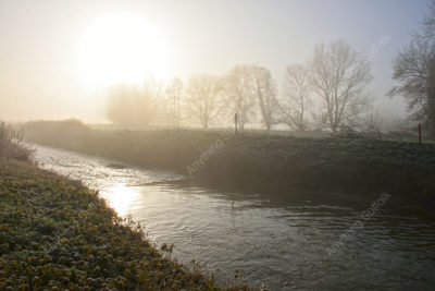 Misty Suffolk river bank by James Ellis
