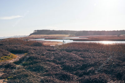 Covehithe, Suffolk Coast by Sam Spinks