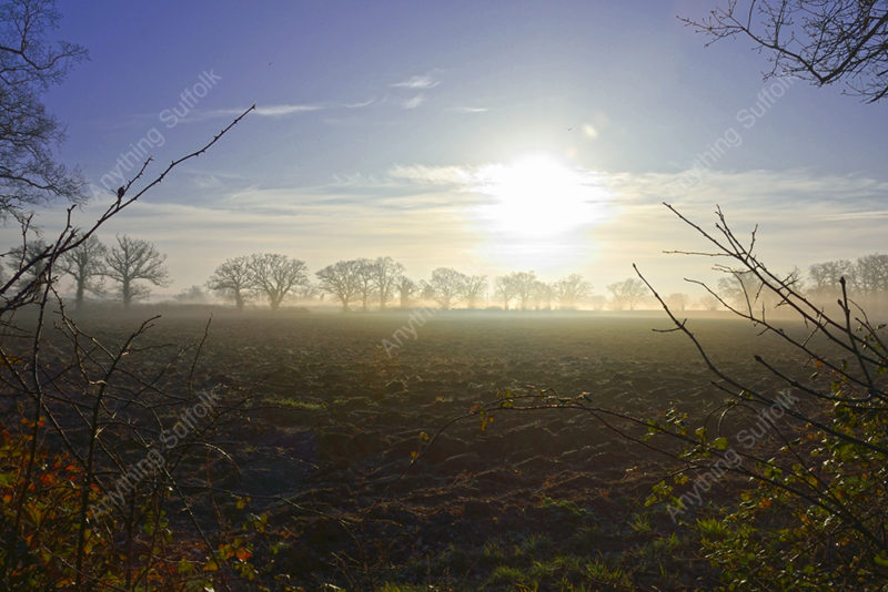 Ploughed Field by James Ellis