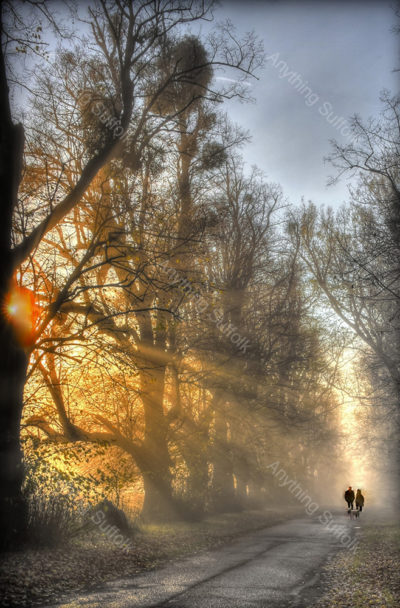Winter Dog Walkers, Kentwell Hall by Steve Thomson