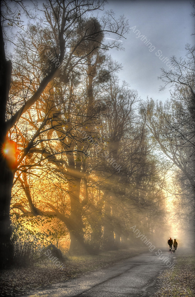 Winter Dog Walkers, Kentwell Hall by Steve Thomson