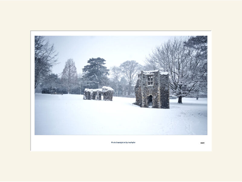 Abbey Gardens ruins in snow mono