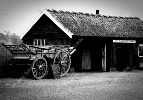 Easton-Farm-Park_JE11